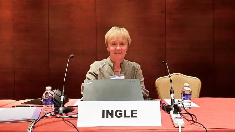 Qui Tam Trial Institute panel - Suann Ingle
